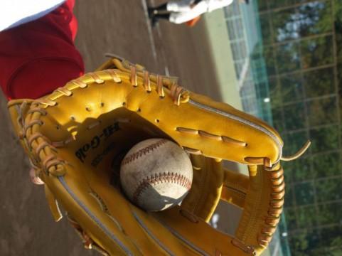 野球大好き人間は絶対にフォローしておきたい野球関係のTwitter12アカウント!