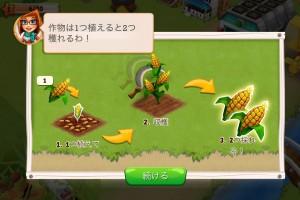農作物の育ち方